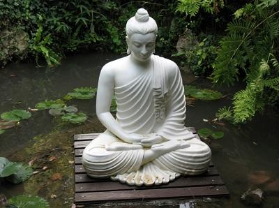 frases budistas cortas